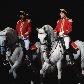 Two Lipizzaner stallions being ridden during a horse show.