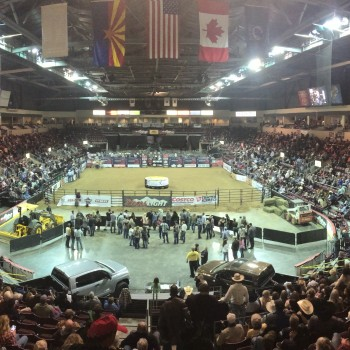 The crowd and rodeo arena during a bull riding event.